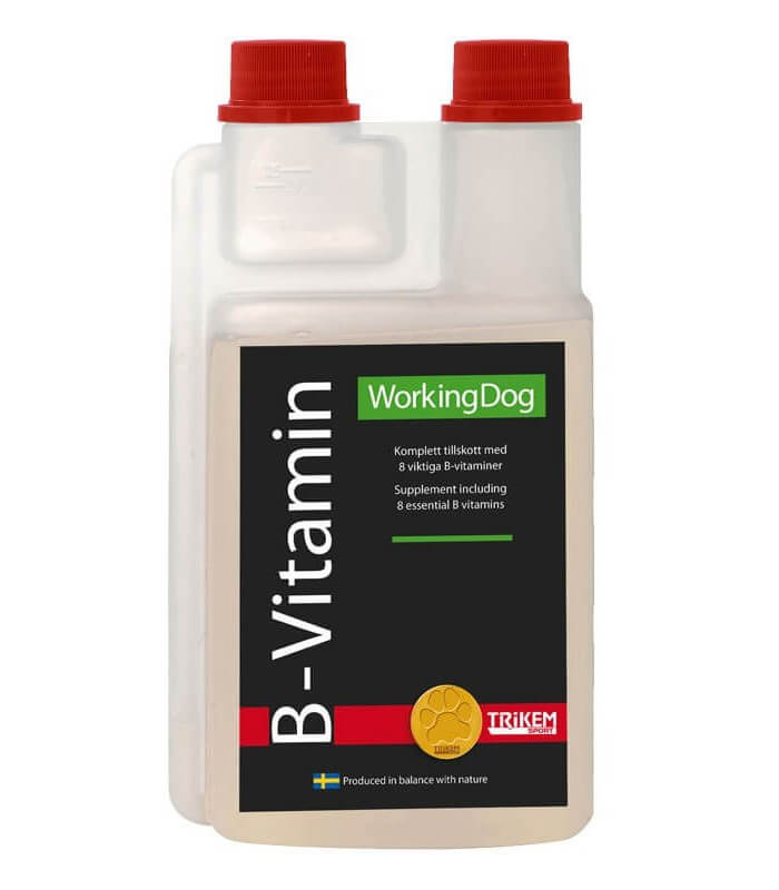 WorkingDog B-Vitamin